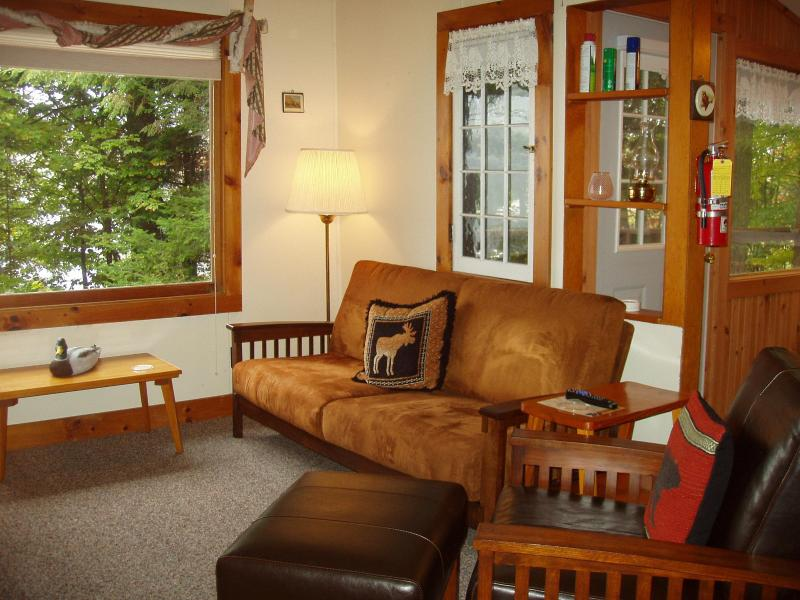Living room - Cherry East -- 2 bedroom cottage on Lake Pleasant - Speculator - rentals