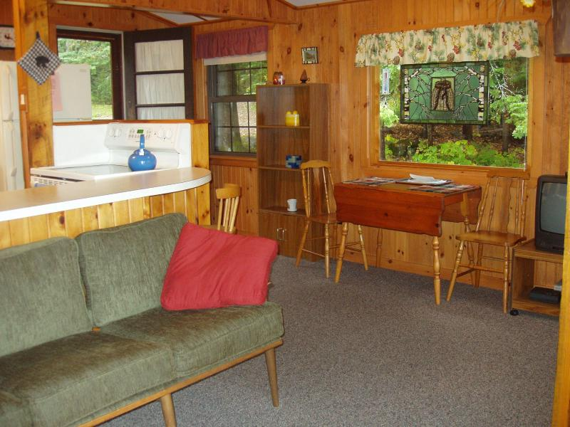 Living room with entrance - Cherry West--2 bedroom cottage on Lake Pleasant - Speculator - rentals