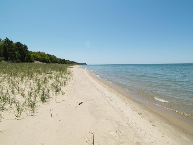 Lake Michigan Beachfront-Fireplace, A/C - Image 1 - Manistee - rentals