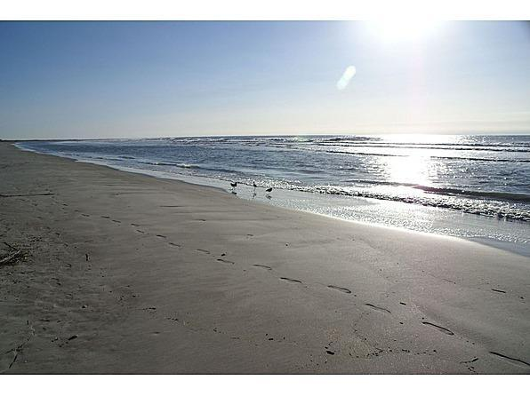 Fripp Island Beach near the house - Private house 200 ft from beach partial ocean view - Fripp Island - rentals
