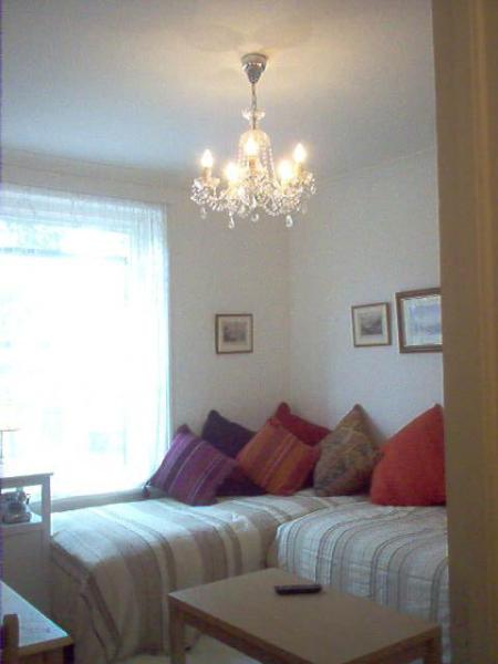 Living area - Cozy pier de terre, central to tube & Kew Gardens - Richmond - rentals