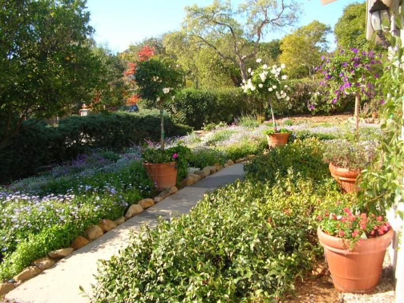 California Native Landscape Accented by Lavender and Trumpet Vines - Sustainable Montecito Home in Serene Neighborhood - Montecito - rentals