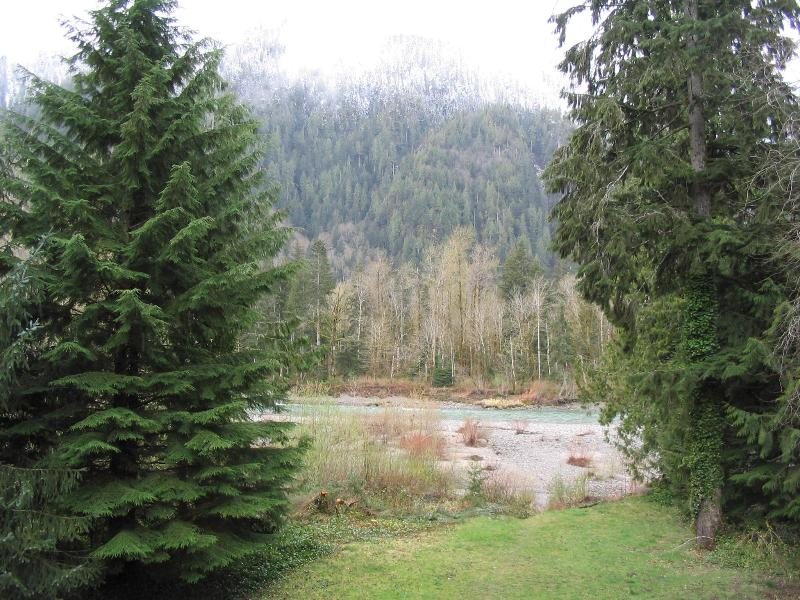 View from deck - Secluded luxurious eco-friendly riverfront cabin - Baring - rentals