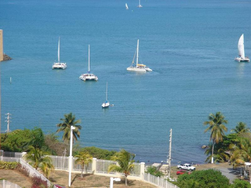 Three catamarans entering the marina (view from terrace) - Luxury Penthouse with a Unique Breathtaking View - Fajardo - rentals