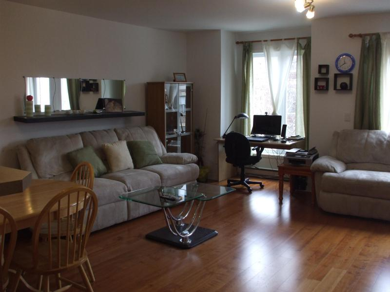 Spacious Living Room - Westmount Big Luxury Condo - next to subway - Montreal - rentals