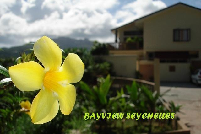 Luxury 2 bedroom apartment by the Sea - Image 1 - Mahe Island - rentals