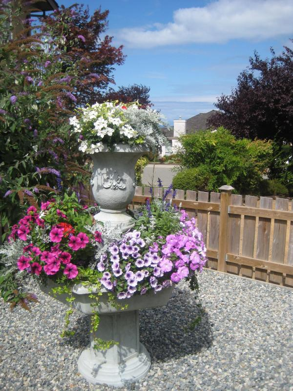Old Fountain Planter in Enclosed Courtyard with Ocean view in background. - SuiteRetreat950sqft2Bed1BathPrivatePatioCourtyard - Nanaimo - rentals