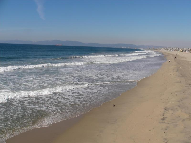 Steps to downtown and 2 blocks to beach - Two Blocks to the WORLD FAMOUS STRAND, and  BEACH - Hermosa Beach - rentals