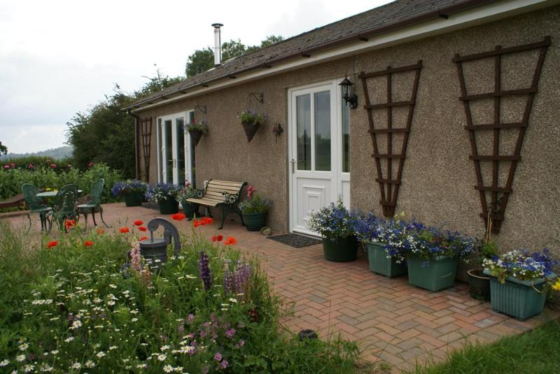 Blackthorne Lodge Summer 2011 - 2 bedroom country cottage in rural village - Monmouthshire - rentals