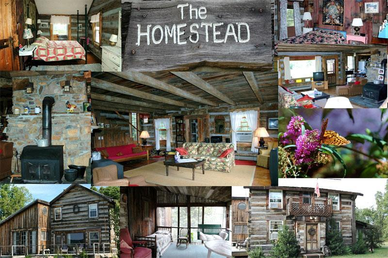 An Overview of the Homestead - Berkeley Springs Antique Log Cabin Vacation Homes - Berkeley Springs - rentals