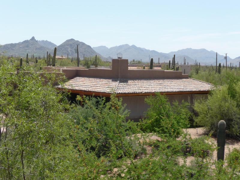 Views of Guest House with Mountains - WARM-UP! SCOTTSDALE DESERT CASITA>REDUCED RATES - Scottsdale - rentals