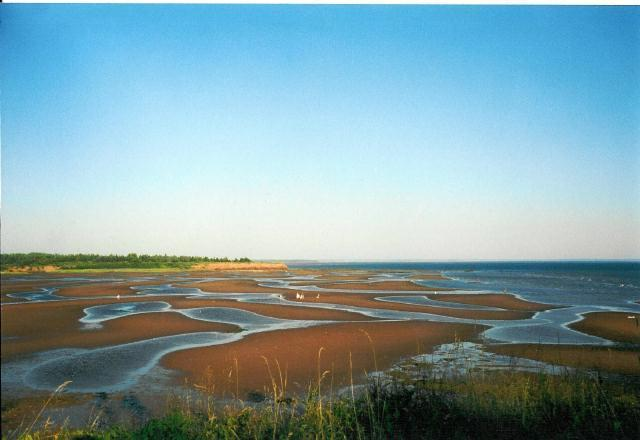 Tidal Flats of Bellview Cove - Stratford,PEI, Canada; 3BR Beachfront Cottage - Stratford - rentals