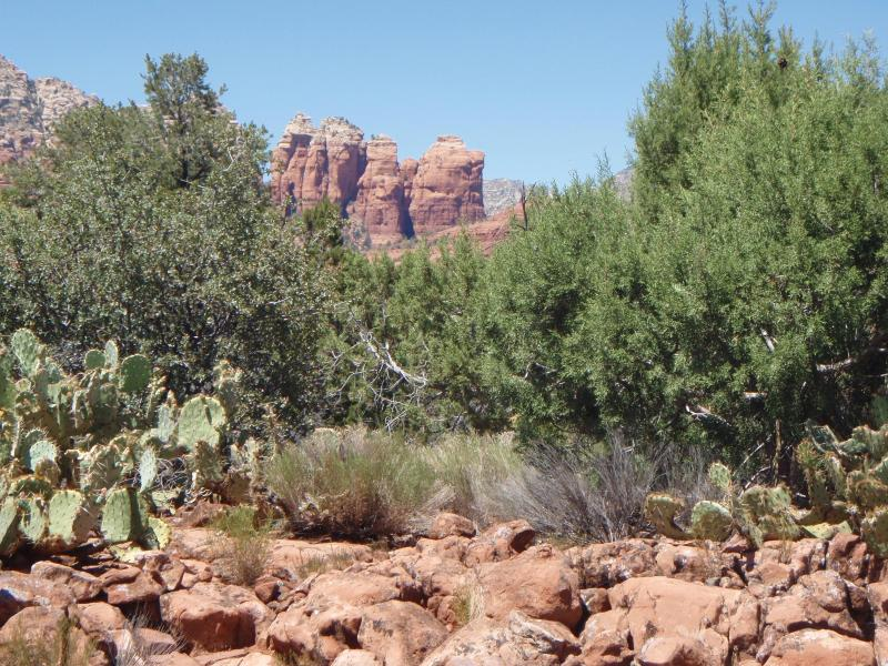 Gorgeous Views from Roadrunner Ridge - Roadrunner Ridge - Sedona - rentals