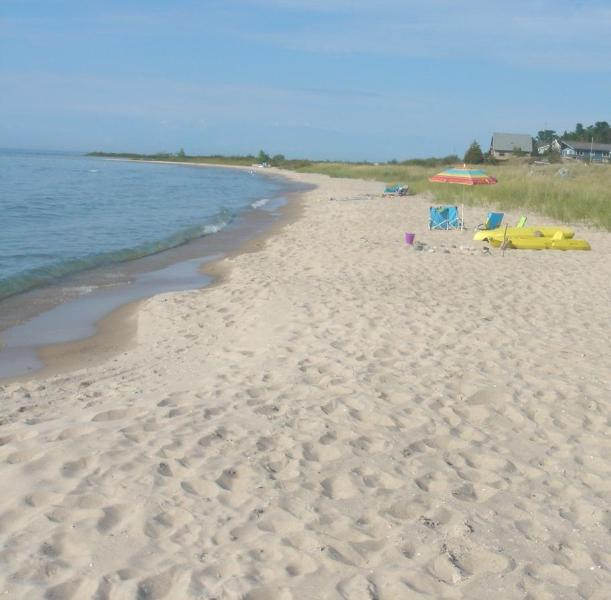 Tropical Style Sunny Dunes! Ideal Beach, Dunes! - Image 1 - Northport - rentals