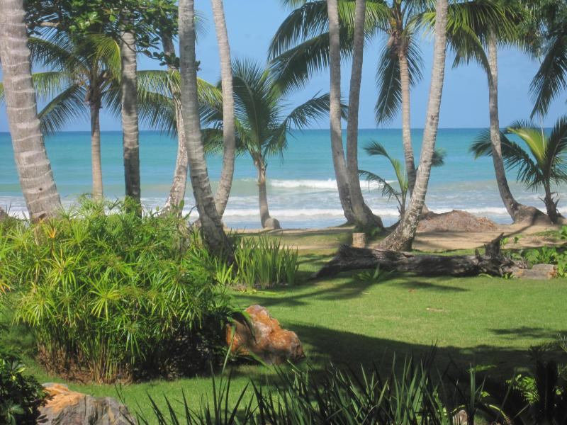 Playa Bonita 3C1 - beautiful view and easy beach access from your terrace! - Glorious Ocean Front 4b/ 3ba - steps to the beach! - Las Terrenas - rentals