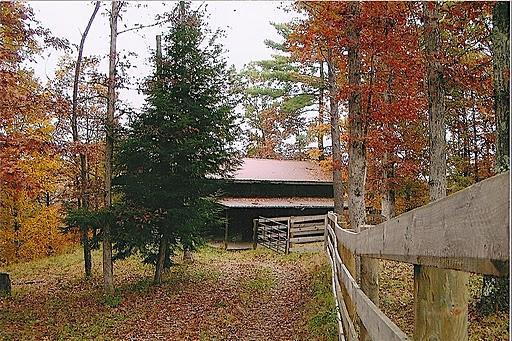 Font view of cabin - Big South Fork Cabin - Stearns - rentals