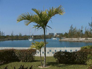 Outside patio area with view of the canal - Crystal Cay Condo Taino Beach, Grand Bahama Island - Freeport - rentals