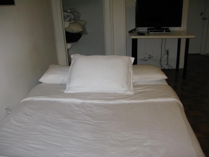 Sleeper, Queen Size - Upper West Side Studio with Terrace - Manhattan - rentals