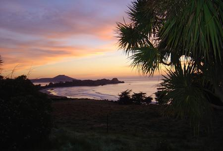 Sunrise view of the ocean and peninsula from house - Tirimoana 1920s beach house with stunning sea view - Dunedin - rentals
