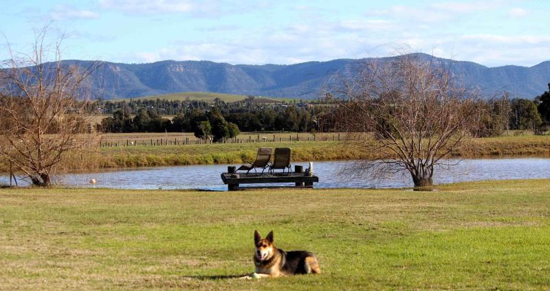 Genesis Vineyard Guesthouse Lovedale Hunter Valley - Image 1 - Rothbury - rentals