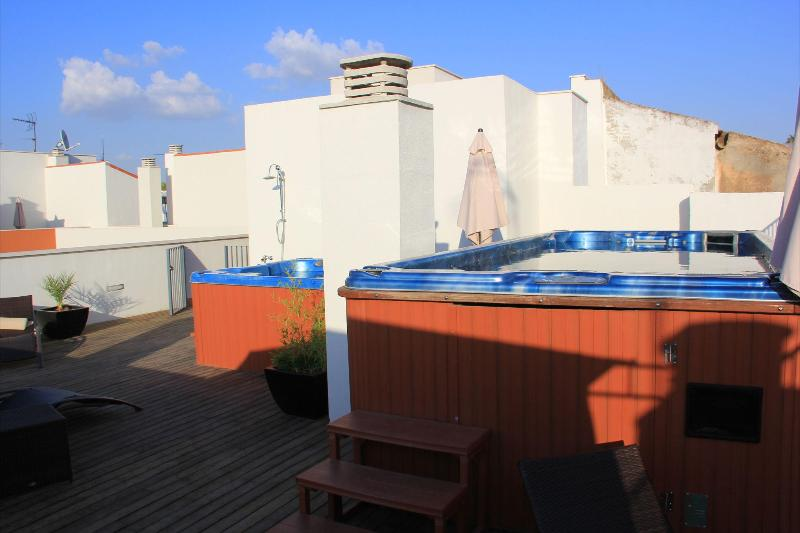 Pool terrace - Grande suite Museo,4bdr,roof top pool,sleep 6,WiFi - Seville - rentals