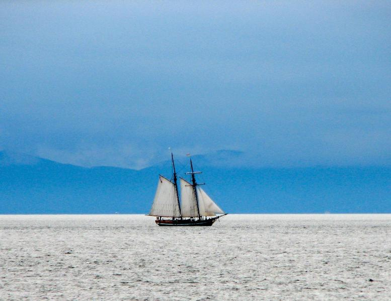 Tall Ships sailing by Clover Point - Trendy Seaside Location- Main Level. - Victoria - rentals