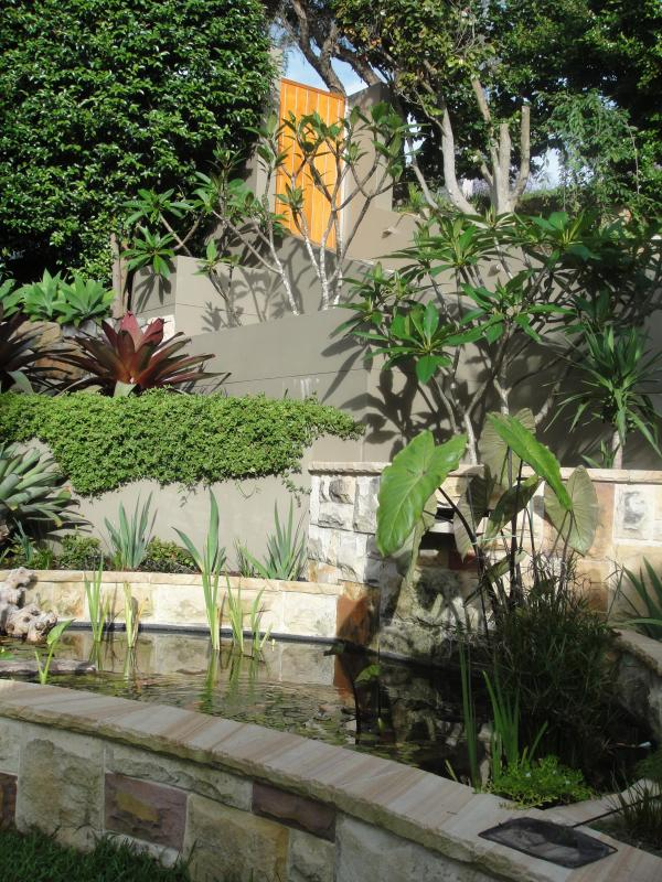 Beautiful graden with tranquil pond and waterfall - Waterlily - Tranquil House near Manly - Manly - rentals