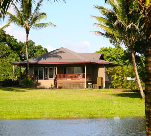 View from river to front of home - Waioli Stream home in Hanalei, steps to beach - Hanalei - rentals
