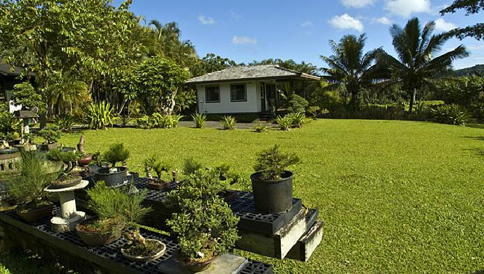Serenity & Seclusion - Hanalei Taro patch Cottages~Serenity & Beauty - Hanalei - rentals
