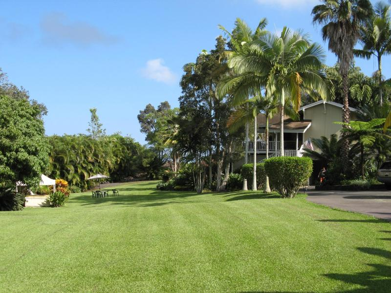 Expansive lawns and gardens surround the B&B - Areca Palms Estate Bed and Breakfast - Captain Cook - rentals