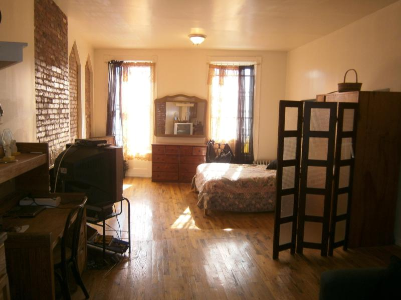 huge one bedroom apt - Amazing 1 Bedroom Apt. Downtown Brooklyn! - Brooklyn - rentals
