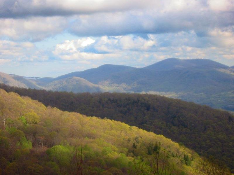 View from the house - Mountain House-Spectacular Views Near Asheville - Asheville - rentals