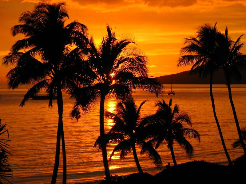 Breathtaking sunsets - Classic Island Paradise...Directly on SUGAR BEACH - Kihei - rentals