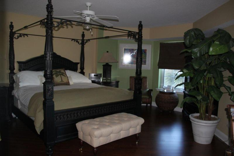 Master bedroom - Luxury Beach Paradise/Ocean View, Ponce Inlet, Fl - Ponce Inlet - rentals