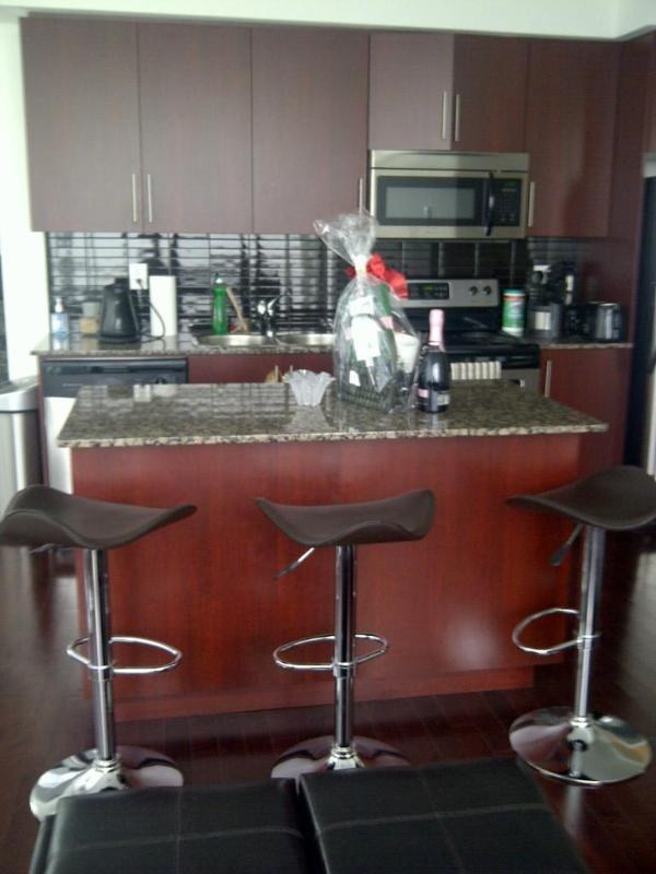 Downtown Luxury Condo with an Amazing View! - Image 1 - Toronto - rentals