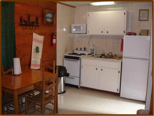 "Ute Bluff Lodge - Cabin 7 - ""Mountain Spring"" - Image 1 - South Fork - rentals"