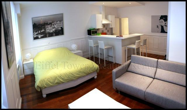Spacious studio apartment - La Fayette Apartment - 9th Arrondissement Opéra - rentals