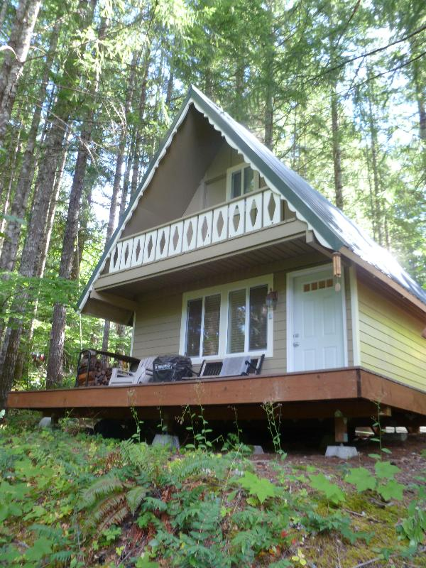 Peaceful Quaint Ski Cabin Near White Pass - Image 1 - Packwood - rentals