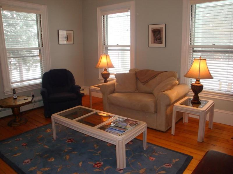 Hide-a-Bed in Living Room - Beautiful,  1st Floor, Upscale Apt in Camden, ME - Camden - rentals
