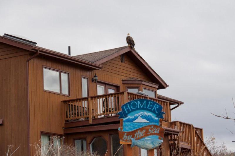Homer Alaska by the Sea - Vacation Rental - Image 1 - Homer - rentals