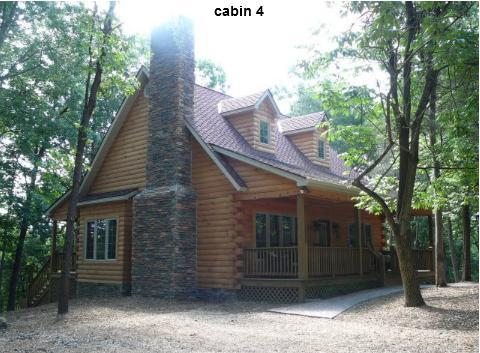 A Above the River Cabin - Image 1 - Luray - rentals