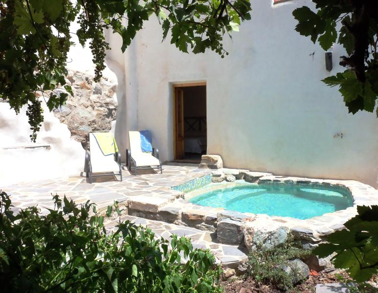 Pool - Village House with Pool and Walled Garden - Granada - rentals