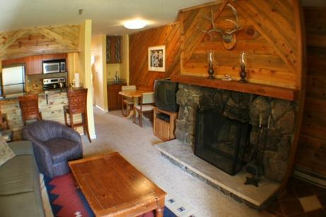 Ski-in/out Condo! Fireplace! Hot Tub! Cute! Slps 4 - Image 1 - Crested Butte - rentals