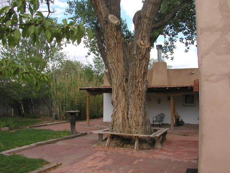 Charming Old Adobe Furnished House in North Valley - Image 1 - Albuquerque - rentals
