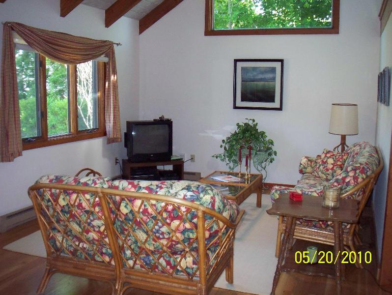 Living Room - In Town-Great Home in Quiet Downtown Neighborhood - Edgartown - rentals