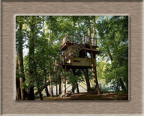 Sanctuary Tree House - Image 1 - Luray - rentals