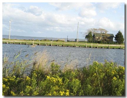 Water Edge Beach Cottage - Image 1 - Snow Hill - rentals