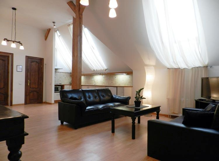 Living room - Cozy 1 bedroom apartment in a Riga Center - Riga - rentals