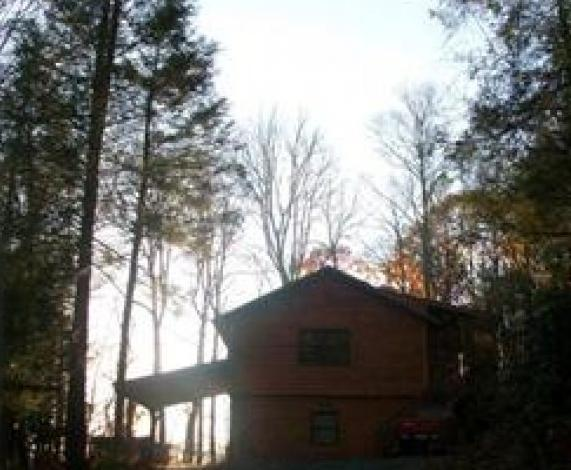 View from Driveway - Andrea's Cabin – 2/2 - Boone - rentals