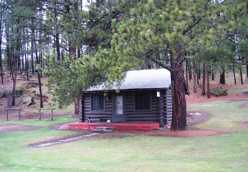 Cozy Log Cabin in the Heart of the Black Hills - Image 1 - Custer - rentals